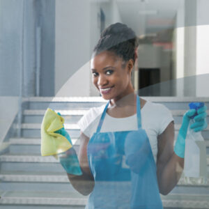 Tips for Window Cleaning